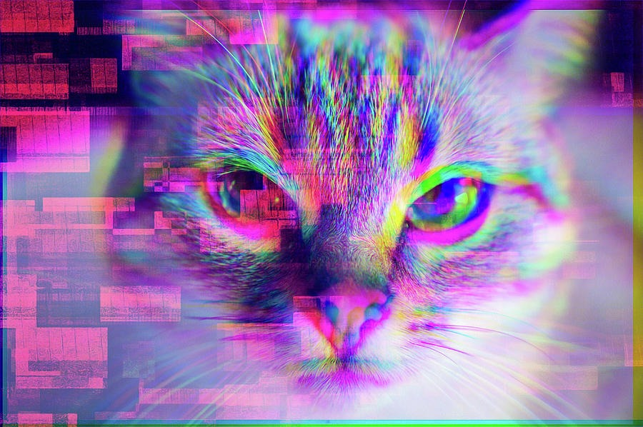 27 Cool #038; Trippy Pictures 1739047024