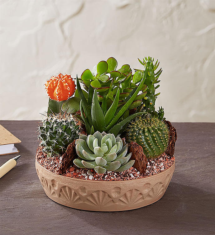 8 Perfect Gifts For The Plant Lover In Your Life