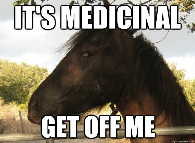 20 Really Funny Horse Memes 901451675