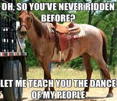 20 Really Funny Horse Memes 575468997