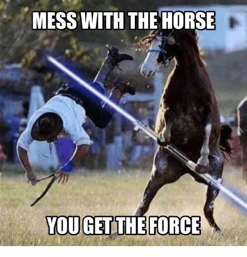 20 Really Funny Horse Memes 181887224
