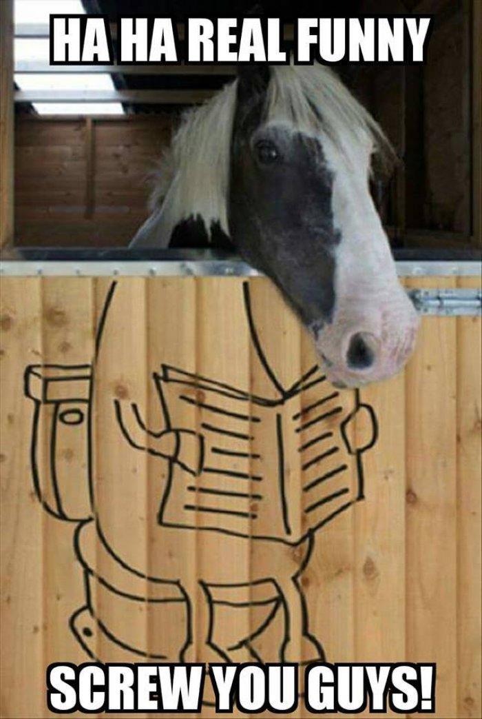 20 Really Funny Horse Memes 1269455174