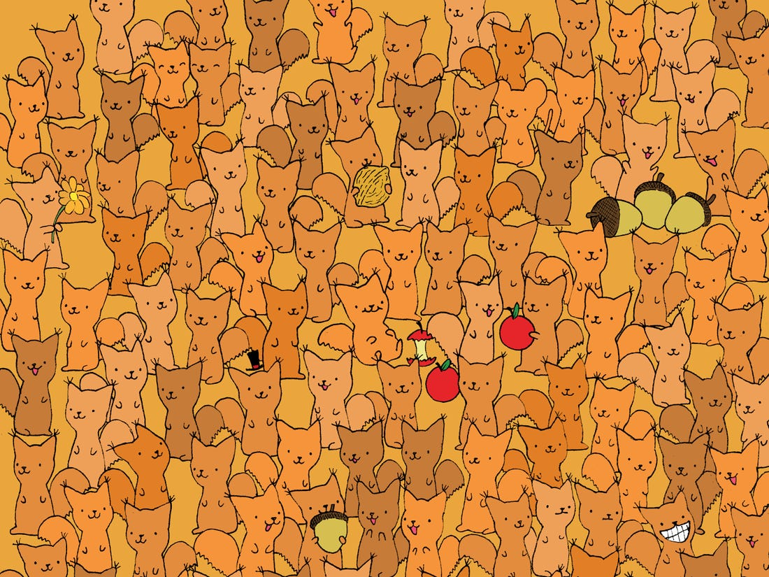 Can You Spot The Mouse In This Squirrel Brain Teaser In 2 Minutes?